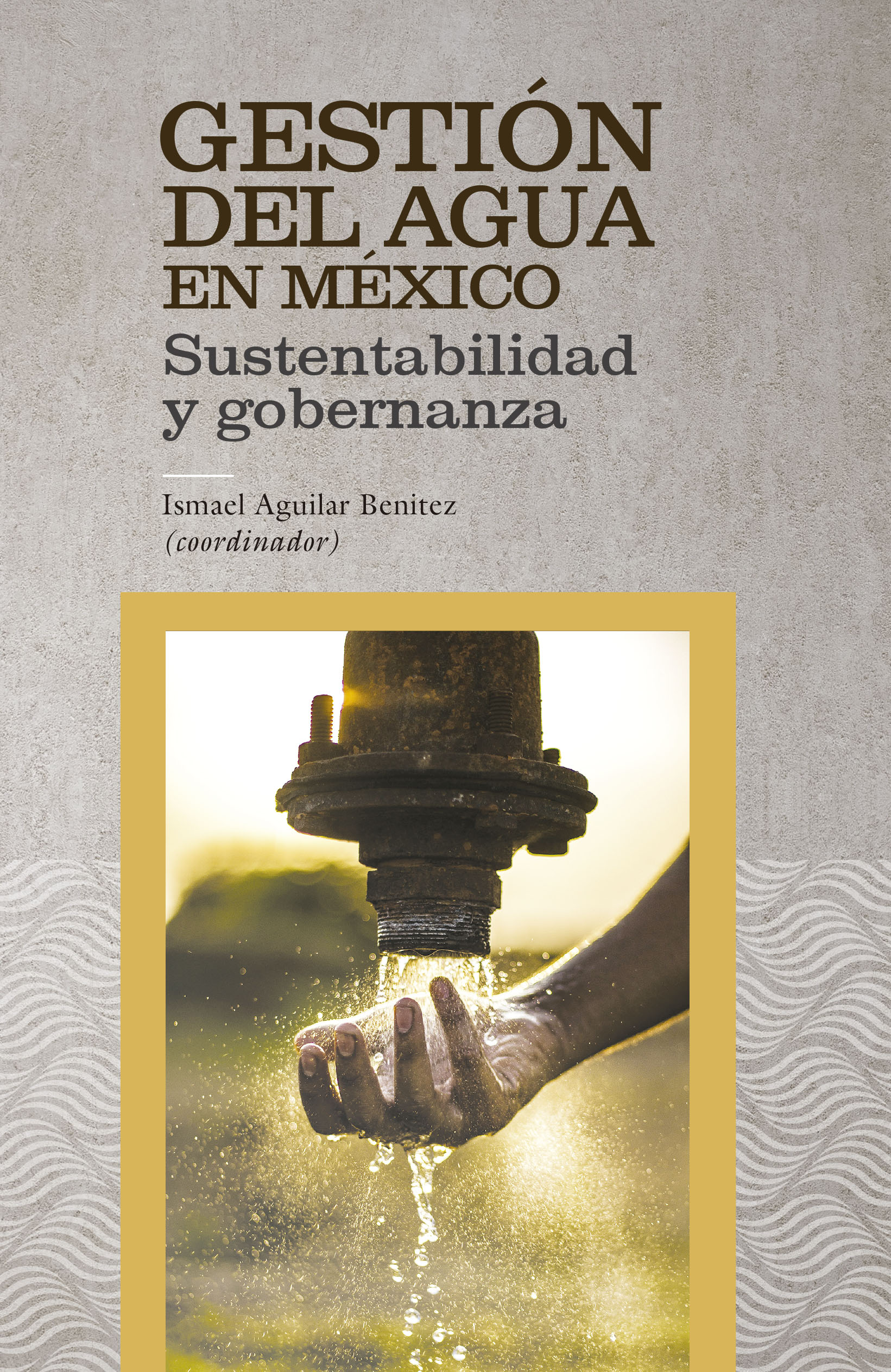 Portada de Gestión del agua en México: Sustentabilidad y gobernanza